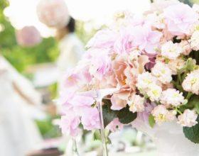 Nën lule gjembi apo mbi gjembin lule?