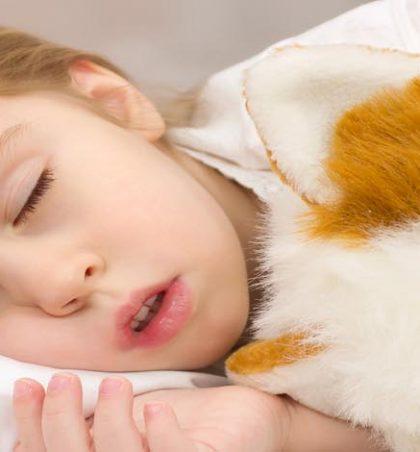 Cila është lutja para se me fjetë ?!!