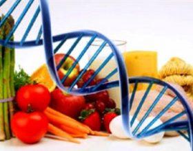Ushqimi që na e zhduk ADN-në