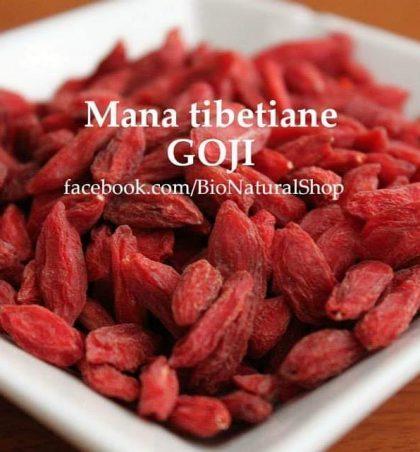 Mana tibetiane GOJI është fruti më i shëndetshëm