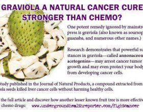 Graviola, fruti qe sheron kancerin