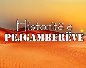 Historia e Salihut (alejhi selam)