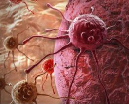 Agjërimi shkatërron kancerin – A e ke ditur?