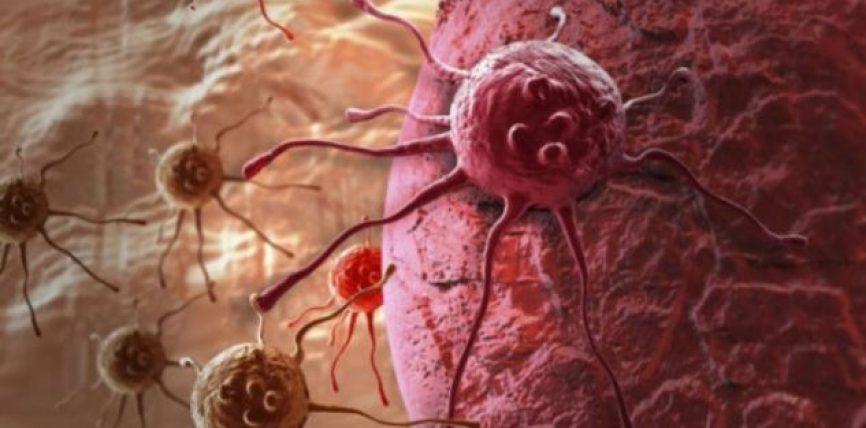 Sipas Harvard, këto janë faktorët që lidhen me kancerin e gjirit