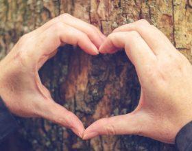 Duajeni bashkëshorten tuaj sipas shembullit profetik