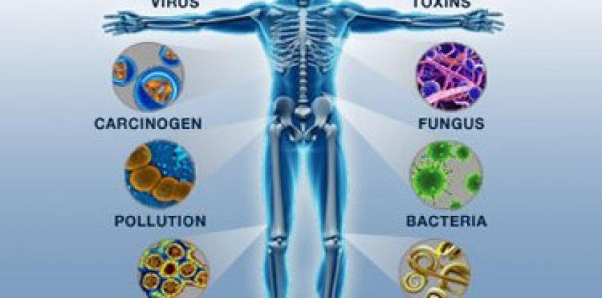 Mungesa e zinkut zvogëlon imunitetin