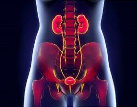 Cilat janë shenjat (simptomat) e infeksioni urinar ?