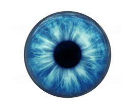 Irisi- pjesa e ngjyrosur e syve