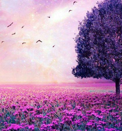Ne nuk mundemi ta ndryshojmë të kaluarën e as ta pikturojmë të ardhmen, atëherë pse e mbysim veten me pikëllim
