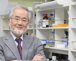 Fituesi i Nobelit, japonezi Joshinori Ohsumi tregon se si pastrohet trupi nga qelizat e panevojshme gjatë Ramazanit