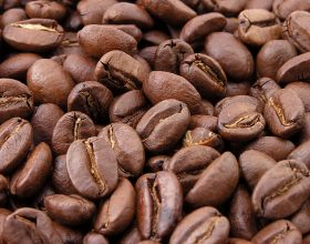 Zbulimet e muslimanëve që ndryshuan botën: Kafeja