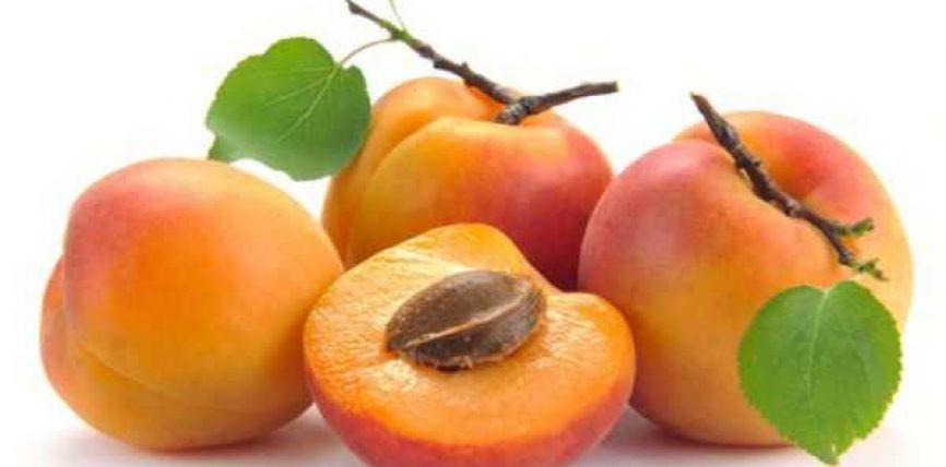 Kajsia një frut i mrekullueshëm