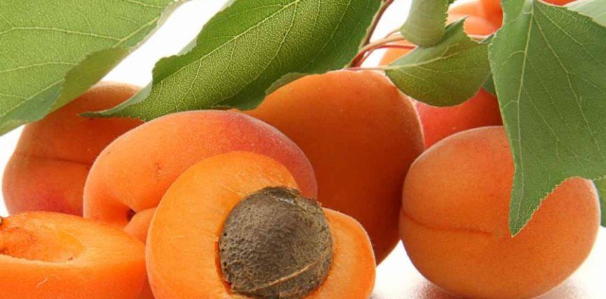 Kajsia është një nga frutat më të pasuara me beta carotene