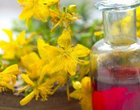 Lulebasani,(kantarioni) ka efekt qetësues në sistemin nervor