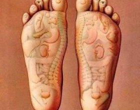 Lëkura e këmbës dhe organet e trupit