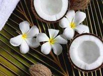 Vaji i arrave te kokosit