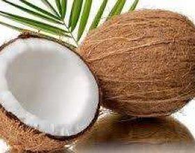 Arra e kokosit