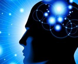 Studim: Kujtimet e humbura mund të rizgjohen