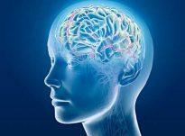 Shikimi i femrave dobëson kujtesën