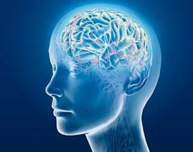 Disa mënyra si të përmirësoni kujtesën