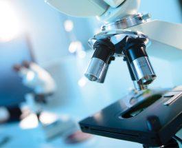 Analizat laboratorike të vajit të kokrrës së zezë