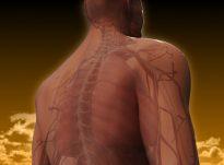Problemet shëndetësore që mund të krijohen si pasojë e mllefit të pakontrolluar