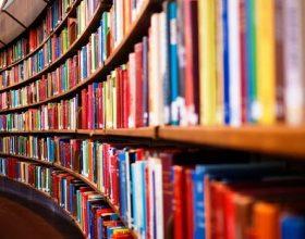 Si t'i lexoni 12 libra për një vit duke mos harxhuar shumë kohë?
