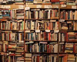 Çudira nga të pasionuarit pas leximit të librave