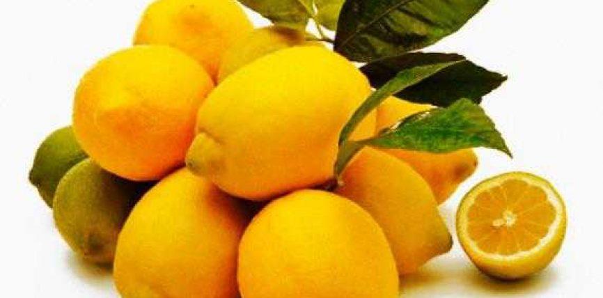 Limoni ,dobite e tij