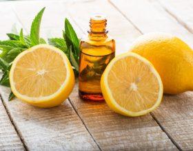 Çfarë i ndodh organizmit tuaj nëse hani një limon në ditë?
