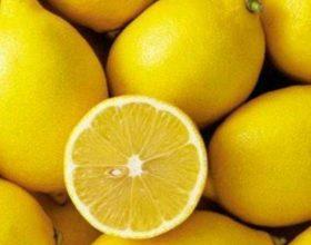 12 Përfitimet nga limoni