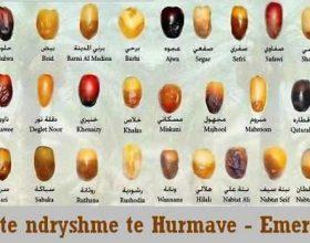 Hurma nga këndvështrimi i Kuranit, Hadithit dhe mjekësisë
