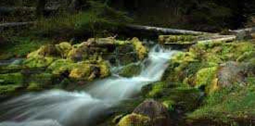 Uji (Ma`) në këndvështrim Islam