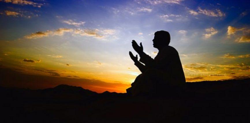 Lutja ndaj cytjeve të shejtanit