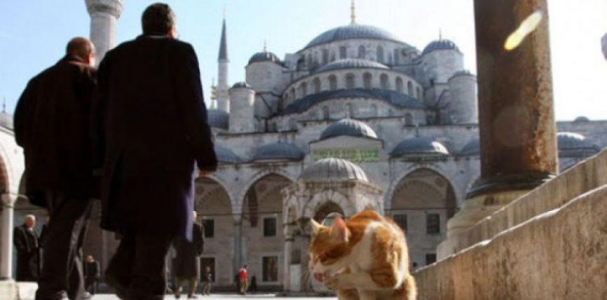 Macet e Stambollit: pa to qyteti do të humbte një pjesë të shpirtit