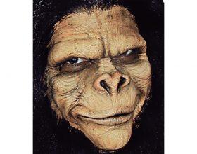 Shndërrimi i njerëzve në majmunë dhe derra!!!