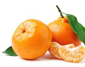 Citrus reticulata var. mandarin (MANDARINA)