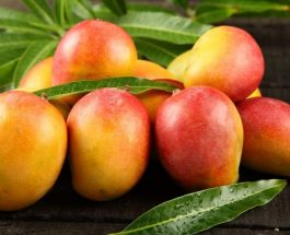 Të mirat shëndetësore të Mangos