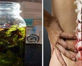 Edhe doktoret e rekomandojne: Masazhoni shpinen tuaj me këtë vaj dhe gjithë dhimbja do të zhduket!