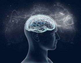 Si të forcojmë kujtesën ? Bëji këto dhe do filloj përmisimi