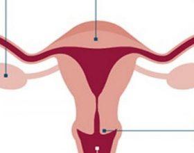 Si ndryshon cikli menstrual në të 20-at, 30-at dhe 40-at e femrës dhe ne cilen moshe duhet te kesh kujdes