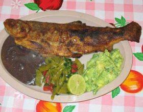 Mishi i peshkut