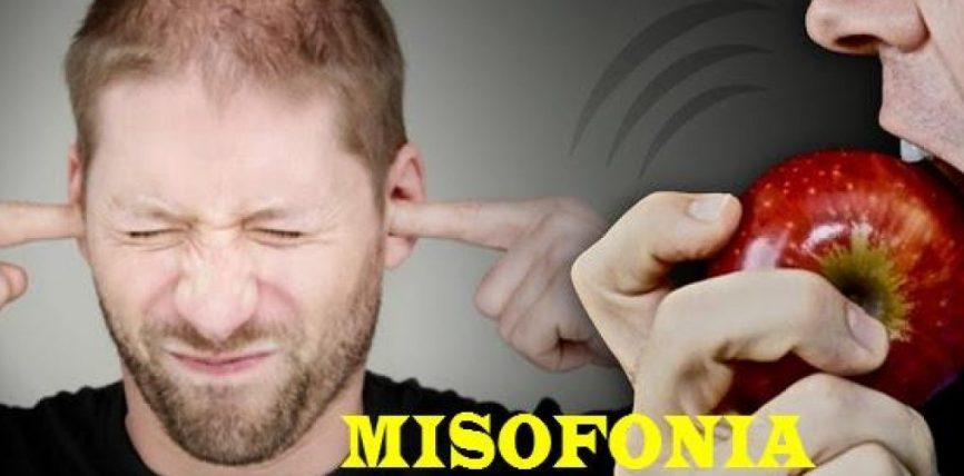 Shumë nga ju e vuajnë pa e ditur, çfarë është misofonia?