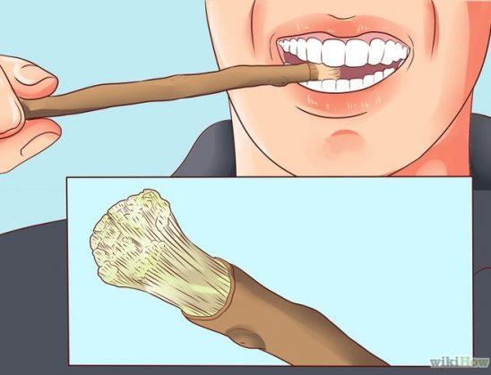 Misvaku antibakterial, brusha që i pastronin dhëmbët myslimanët para 1500 vjetëve