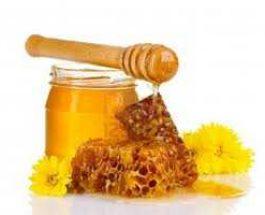 Mjalti si ilaq perdoret te keto semundje