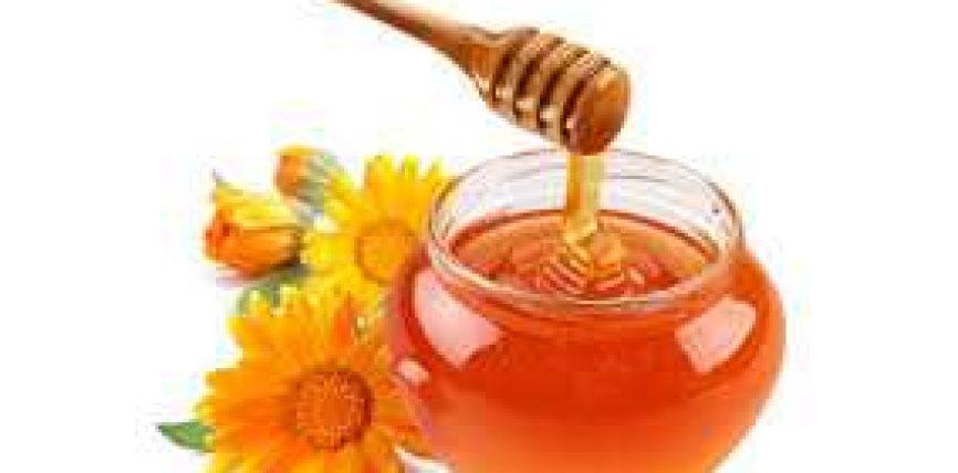 Mjalti dhe xhelatina mbrëterore