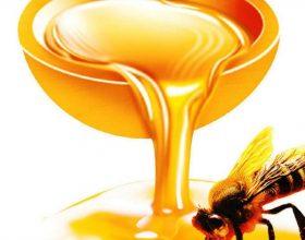 A ekziston lidhja në mes mjaltit dhe aftësisë seksuale?