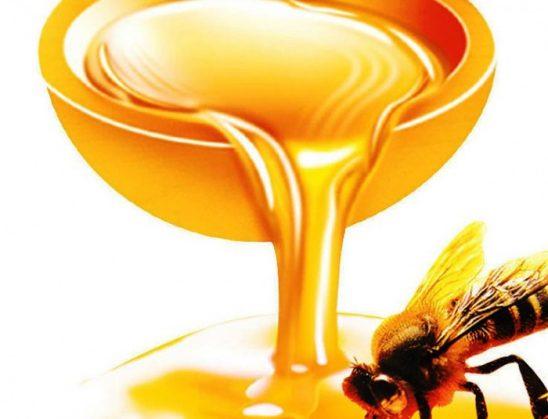 Si bëhet një proces shërues me mjaltë?