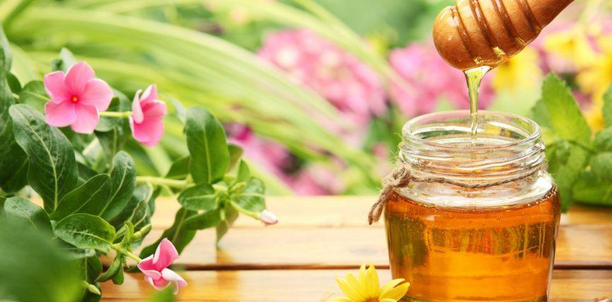 Mjalti dhe plagët