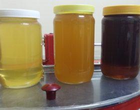 Dallon mjalti i lehtë prej mjaltit të fortë